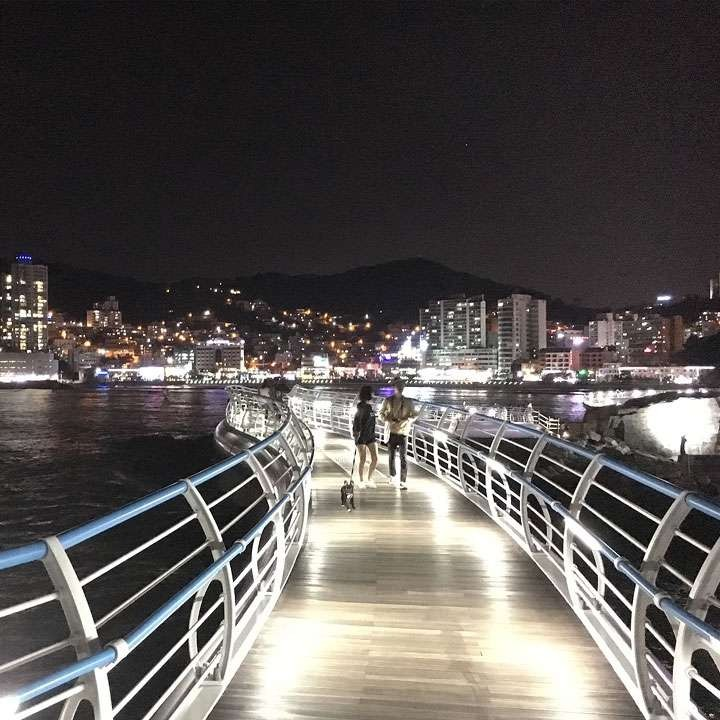 BUSAN NIGHT BUS TOUR